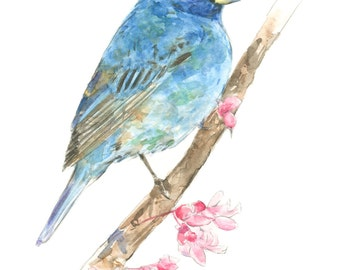 Indigo Bunting watercolor painting - bird watercolor painting - 5x7 inch print - 0065