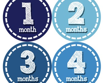 Baby Month Stickers, Baby Boy Gift, Milestone Stickers, Monthly Sticker, Monthly Baby Boy Stickers, Baby Bodysuit, Baby Shower Gift 081