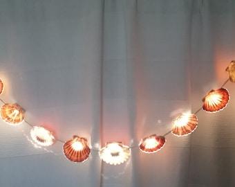 Seashell  light string