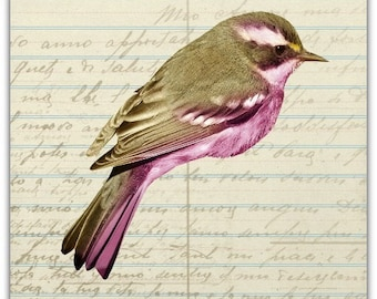 Double 'little bird' original design handmade 15cm x 15cm
