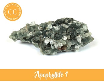 Apophyllite Clusters Choice of 4