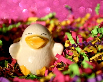 Happy Chick  - Photograph - Various Sizes