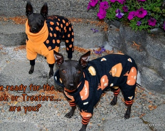 "Happy Halloween JimJam for the Holidays...Custom Fit Petwear for All small dogs up to 18"" Body length."