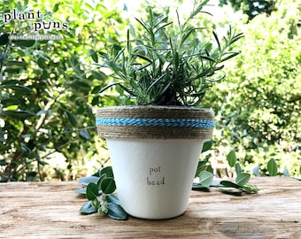 """4"""" Pot Head » Plant Indoor and Outdoor Pot or Planter"""
