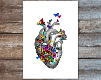 anatomical heart with butterflies illustration