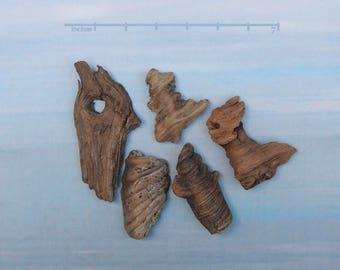 natural raw driftwood sculpture wood art supply 1072