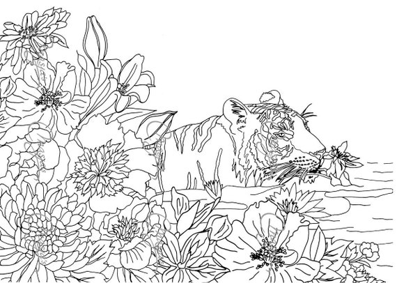 Items similar to Masja\'s Nature # 4 set of 3 Coloring pages on Etsy