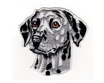 AF65 Dalmatian Dog Patch size 8.5 x 8.5 cm