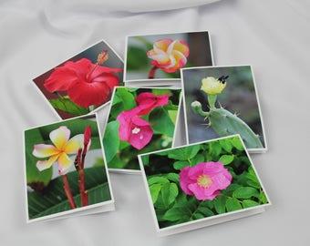 Flower Series Notecards