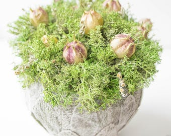 Green bouquet, bouquet with stabilized moss, home decor, home decoration
