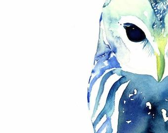 Owl Art - Square Format - Owl in Blue, Watercolor Owl, Bohemian Owl, Owl Art, Owl Decor, Whimsical Owl, Owl Watercolour, Animal Watercolor