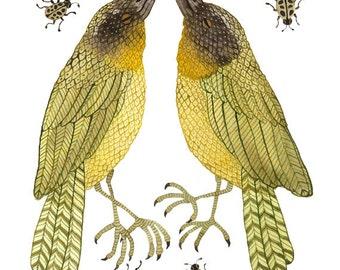 yellowthroats bird art giclee print watercolor reproduction