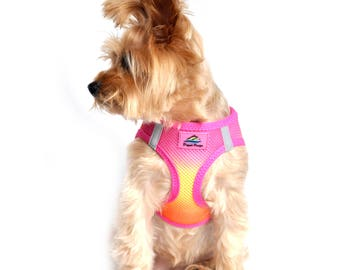 American River Choke-Free Dog Harness - Raspberry and Orange Sorbet Ombre   60955