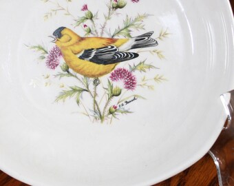 American Goldfinch Plate made in England for National Wildlife Federation