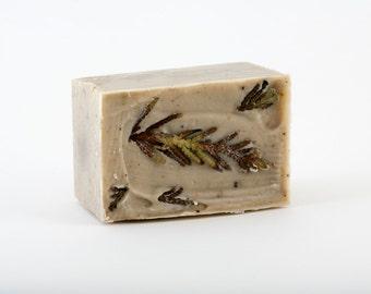 Chaga SOAP 'Forest borealis' and Cedar