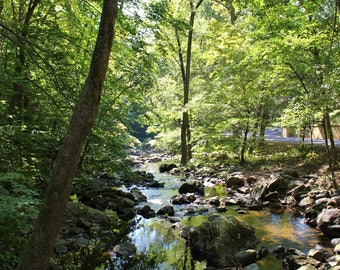 River - Sleepy Hollow