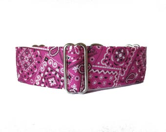 1.5 Inch Martingale Dog Collar, Pink Martingale Collar, Pink Dog Collar, Bandana Dog Collar, Raspberry, Fuchsia, Martingale Dog Collar