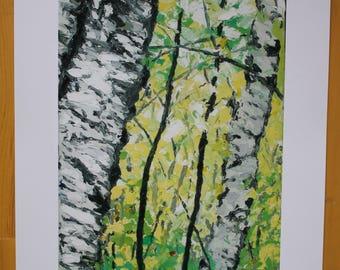Birches of Aroostook-- Print of oil painting
