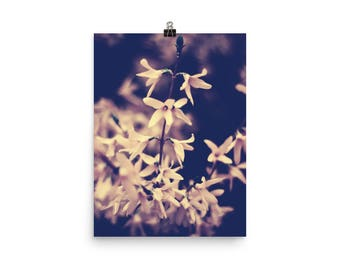 floral print | nature photography | wall art