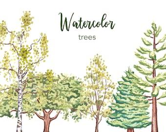 WATERCOLOR CLIPART, tree clipart, watercolor tree clipart, woodland clipart png, pine tree clipart, clipart set, forest clipart, scrapbook