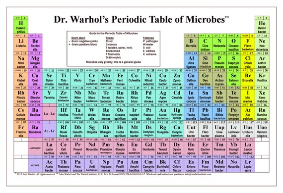 Dr warhols periodic table of microbes urtaz Gallery