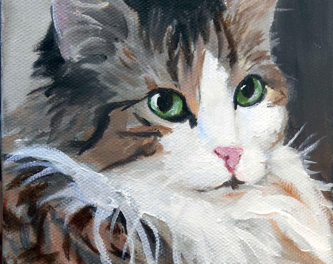 Custom Cat Portrait Oil Painting, 8 x 10 Gift Certificate