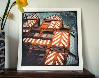 The House Ti Koz - reindeer - 30x30cm - signed and numbered print