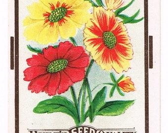 Original vintage chromolithographed seed packet pack c1920 General Store garden folk art Dalton New York Calliopsis Fancy Mixed