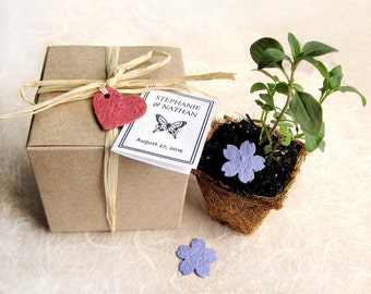 15 Seed Paper Wedding Favors - Plantable Pots and Seed Paper Hearts - Flower Seed Kit - Personalized