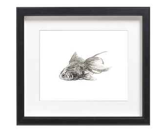 Black Goldfish Pen and Ink Drawing Digital Print