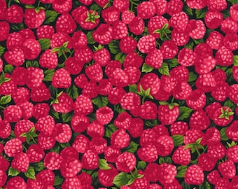 "Fruit Fabric, Raspberry Fabric: NEW Fabri-Quilt Farmer John's Garden Party Raspberry 100% cotton fabric by the yard 36""x43"" (FQ116)"