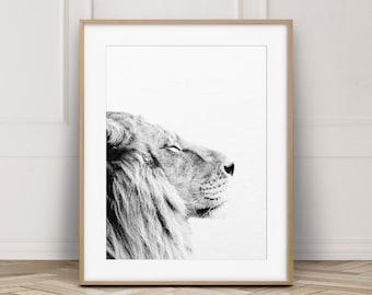 Lion Print, Lion Wall Art, Safari African Animal, Lion Photo, Black And White Animal Print, Modern Wall Art, Nursery Decor, Printable Art