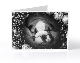 Limited Edition Bulldog Christmas Card: Puppy in black and white