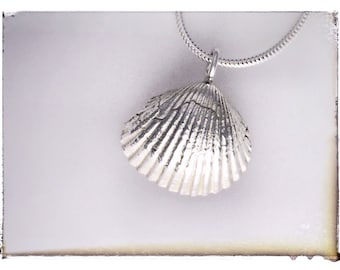 "A beautifully crafted silver shell and an 18"" silver chain"