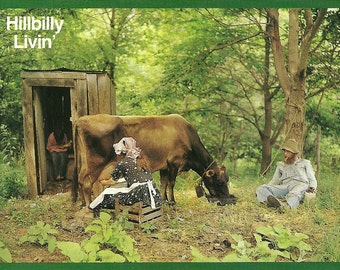 Vintage 1970s Postcard Hillbilly Living Americana Southern Pride Funny Outhouse Cabin Rural Kitsch Card Photochrome Era Postally Unused