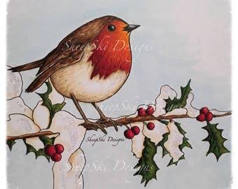 Winter Robin - image no 118