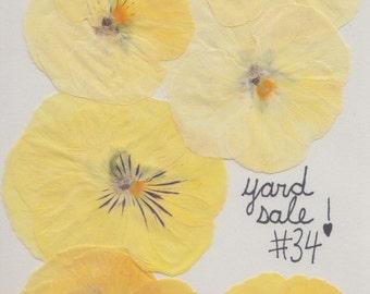 Yard Sale 33, 34, & 17 zines