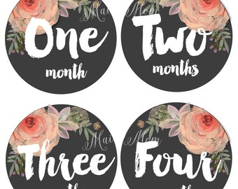 Baby Girl Monthly Stickers, Month Baby Stickers, Milestone Stickers, Watercolor Roses, Floral Bodysuit  Nursery Decor Newborn