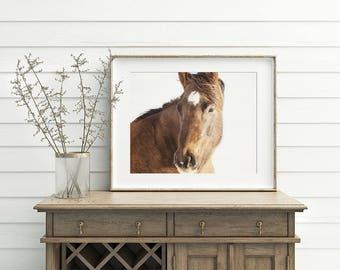Modern Horse Photograph | Monochromatic Color with Neutral Background | PHYSICAL PRINT