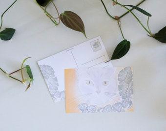 "Postcard ""Monstera Murphy"" • Botanical • Cat • Illustration"