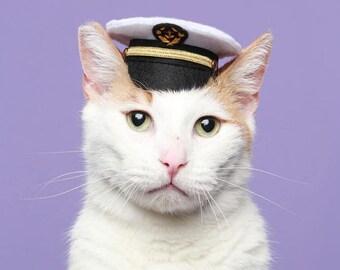 Marine Captain Mini Hat - Cat Captain Hat