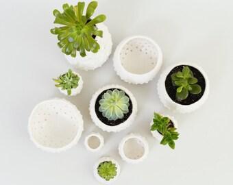 Moderne stacheligen Übertopf weiß Keramik Schale ~ Porzellan Teller Tillandsia Ringhalter ~ weiß Modern Übertopf Strand Dekor Küsten minimalistischen Keramik