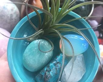 Happy Heart {Chakra} | Tilandsia Air Plant Ceramic Altar | Quartz Crystal, Amazonite, Chrysocolla + Opalite | Reiki | Spiritual Junkies