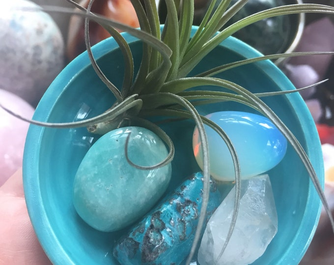Happy Heart {Chakra} | Tilandsia Air Plant Ceramic Altar | Quartz Crystal, Amazonite, Chrysocolla + Opalite | Reiki | Spiritual Junkies