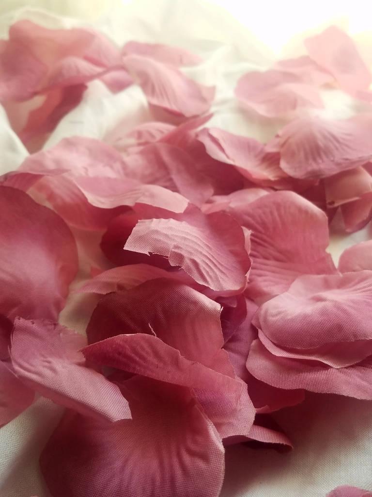 300 Pc Mauve Rose Petals 300 pcs Petalos de Rosa Mauve.