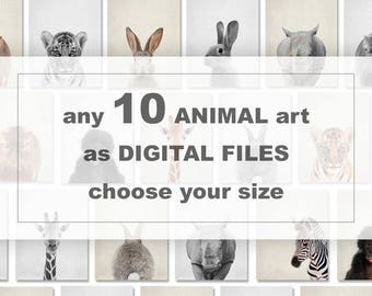 Baby animal download, Printable animals for nursery, Choose any 10 ANIMALS from my charts, woodland animals digital download, farm animals