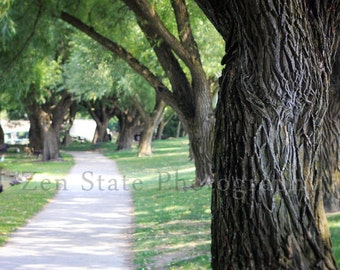 Park Path Photograph. Park Photography Print. Landscape Fine Art Print. Unframed Photo Print, Framed Photography, or Canvas Gallery Print.