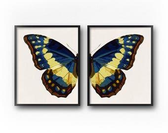 Blue Butterfly Wall Art Print Set of 2, Downloadable Prints, Butterfly Print, Butterfly Wings, Printable Art Set, Diptych, Butterfly Art