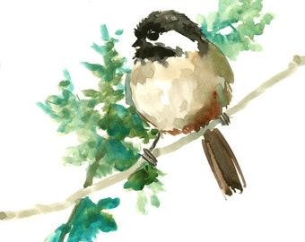chickadee  artwork, bird art watercolor painting, bird art, bird painting, original, watercolor, chickadee