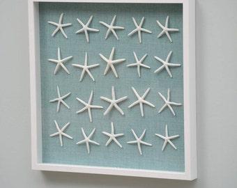 Extra Large Shadow Box with 20 Genuine Sea Stars